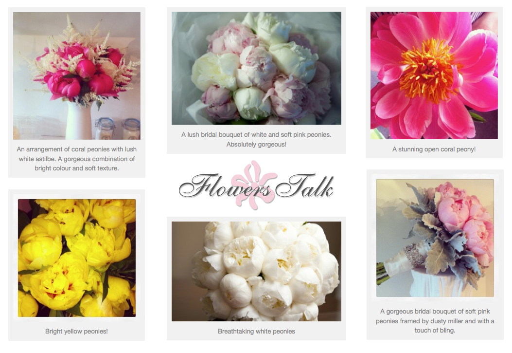 For the Love of Peonies