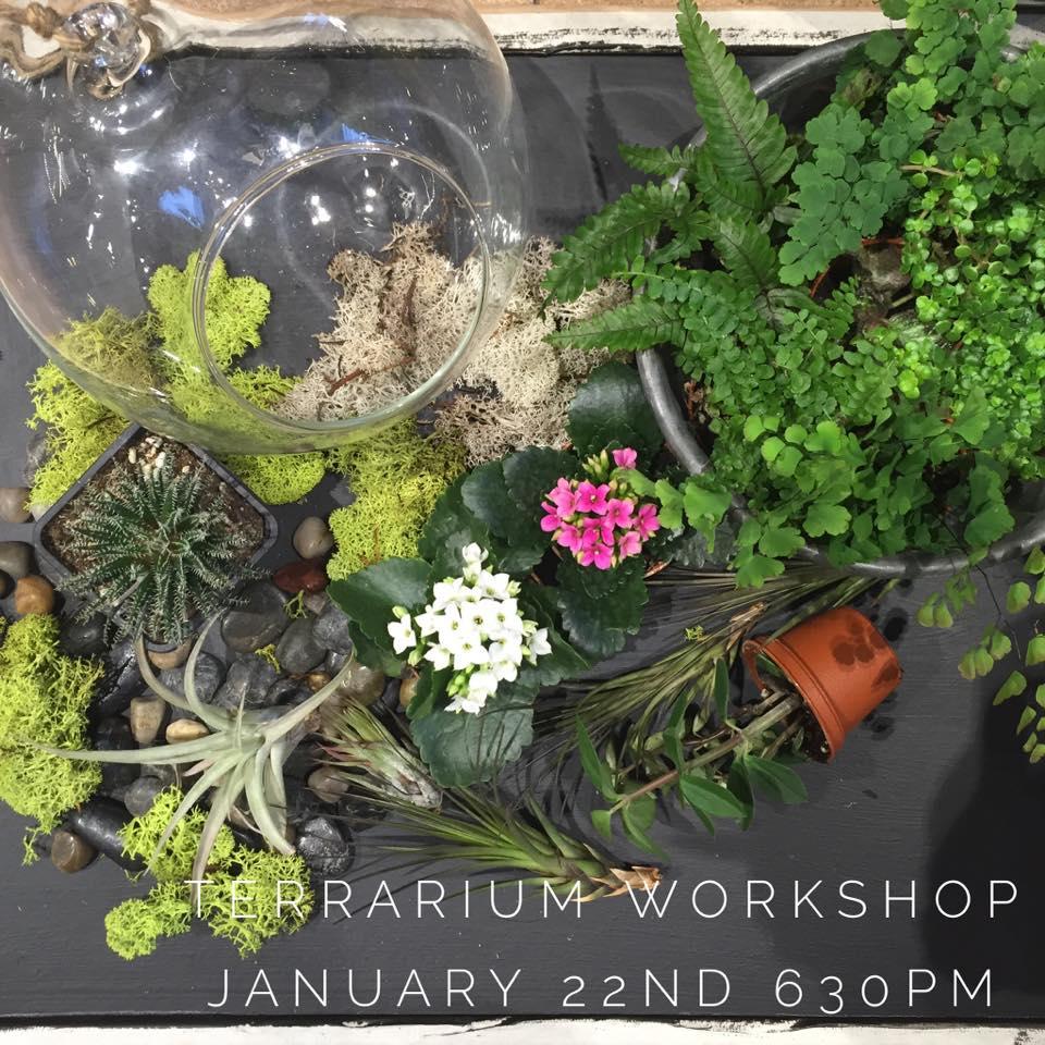 Terrarium workshop January 22nd 2016