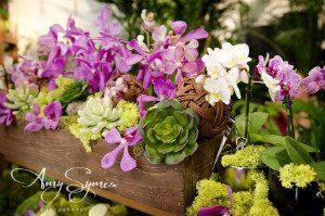 Flowers Talk Tivoli, Amy Symes
