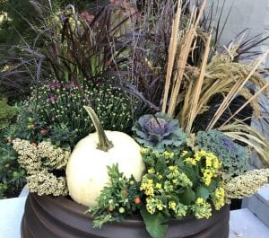 Beautiful Fall planter featuring grasses, pumpkins, and more