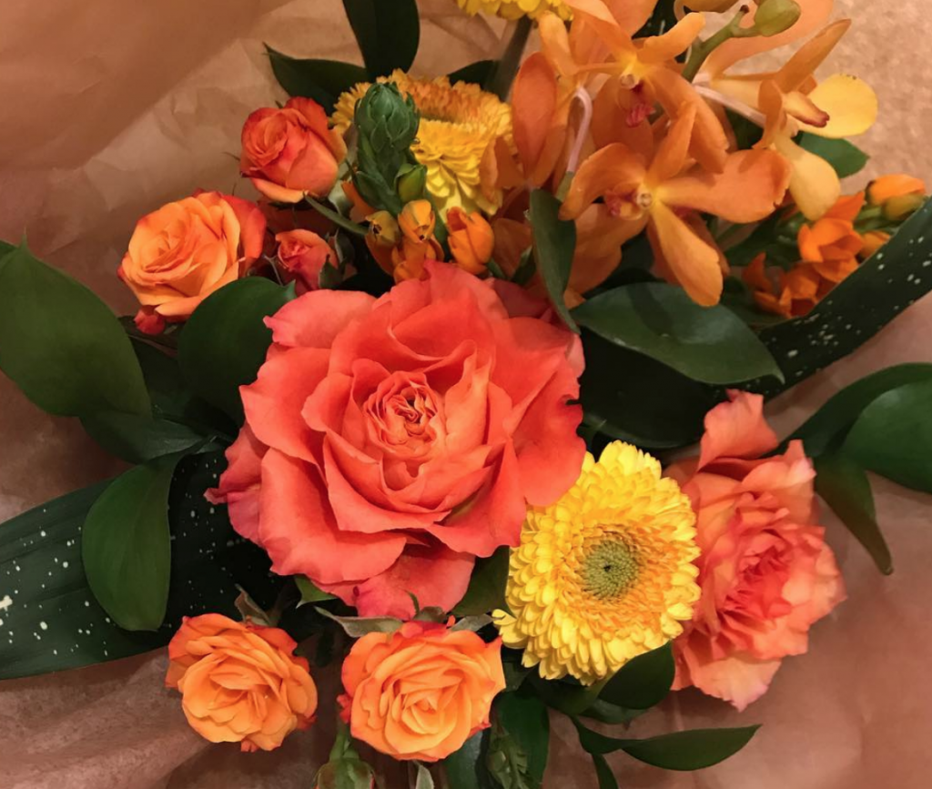 analogous coloured flowers