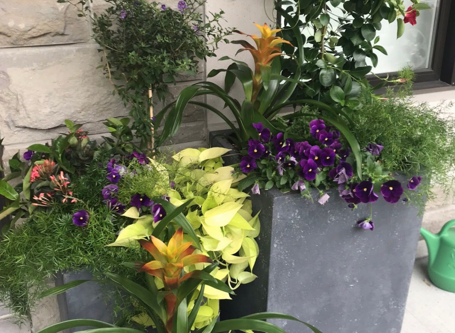 Welcome Summer With Fabulous Planters