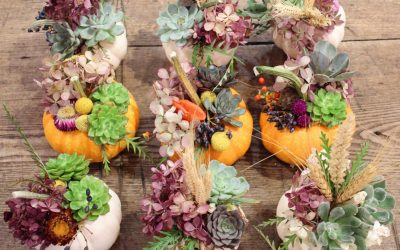 It's Never Too Early to Prepare Your Thanksgiving Decor