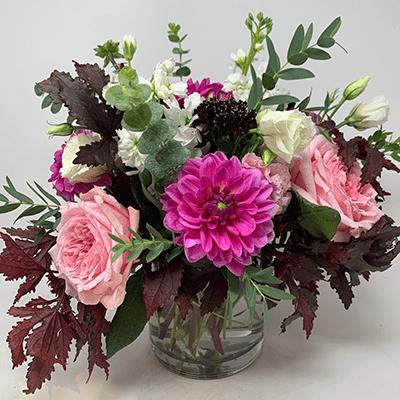 Pink Dahlias - Flowers Talk Tivoli