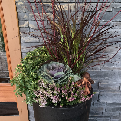 Refresh Your Planters For Fall
