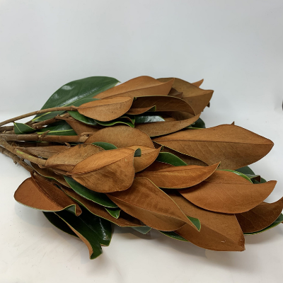 Magnolia Leaves - How To Style Your Thanksgiving Table