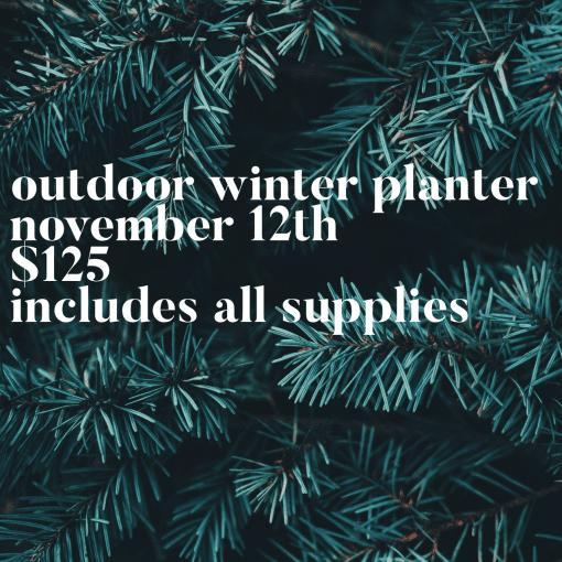 Outdoor-Winter-Planter-Nov-12-Square