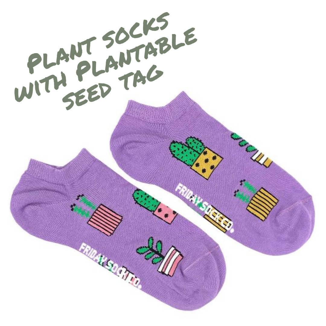 Image of purple socks with green plants on them
