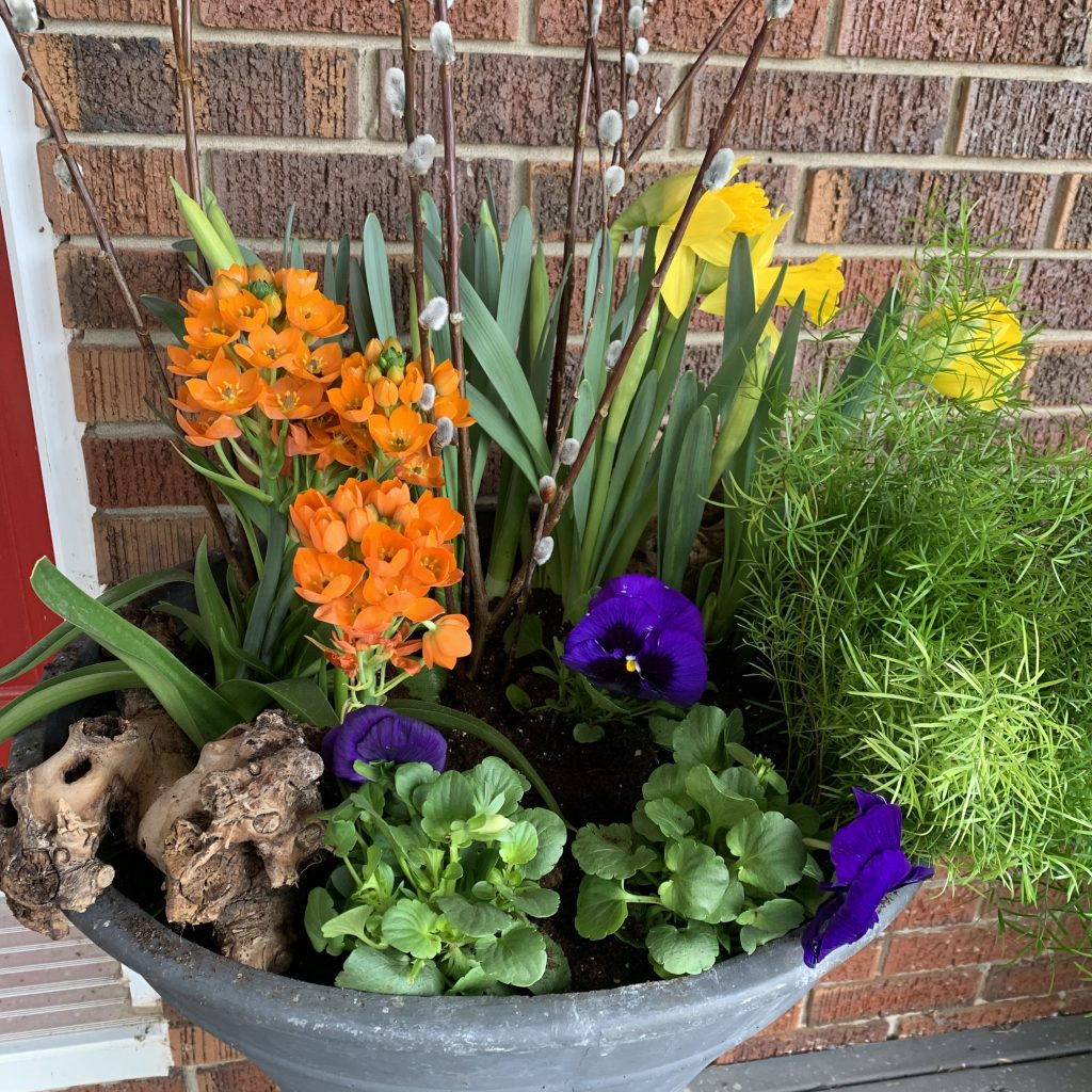 summer container planter with mixed green plants and an array of yellow, orange and purple flowers in a grey pot against a red brick wall