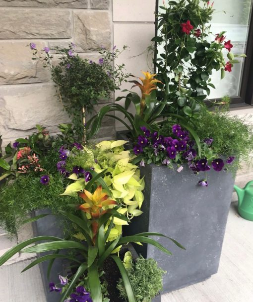 This two pot planter is mixed with yellow, purple and orange flowers, with a mixture of plants.