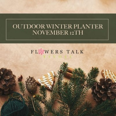 Outdoor Winter Planter Workshop