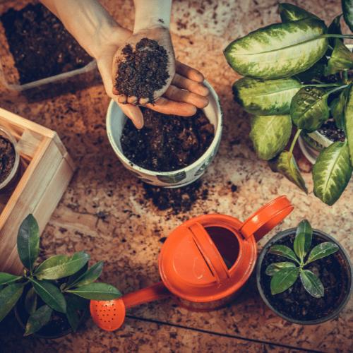 Falling For DIYs — Fall Planters, Workshops & More