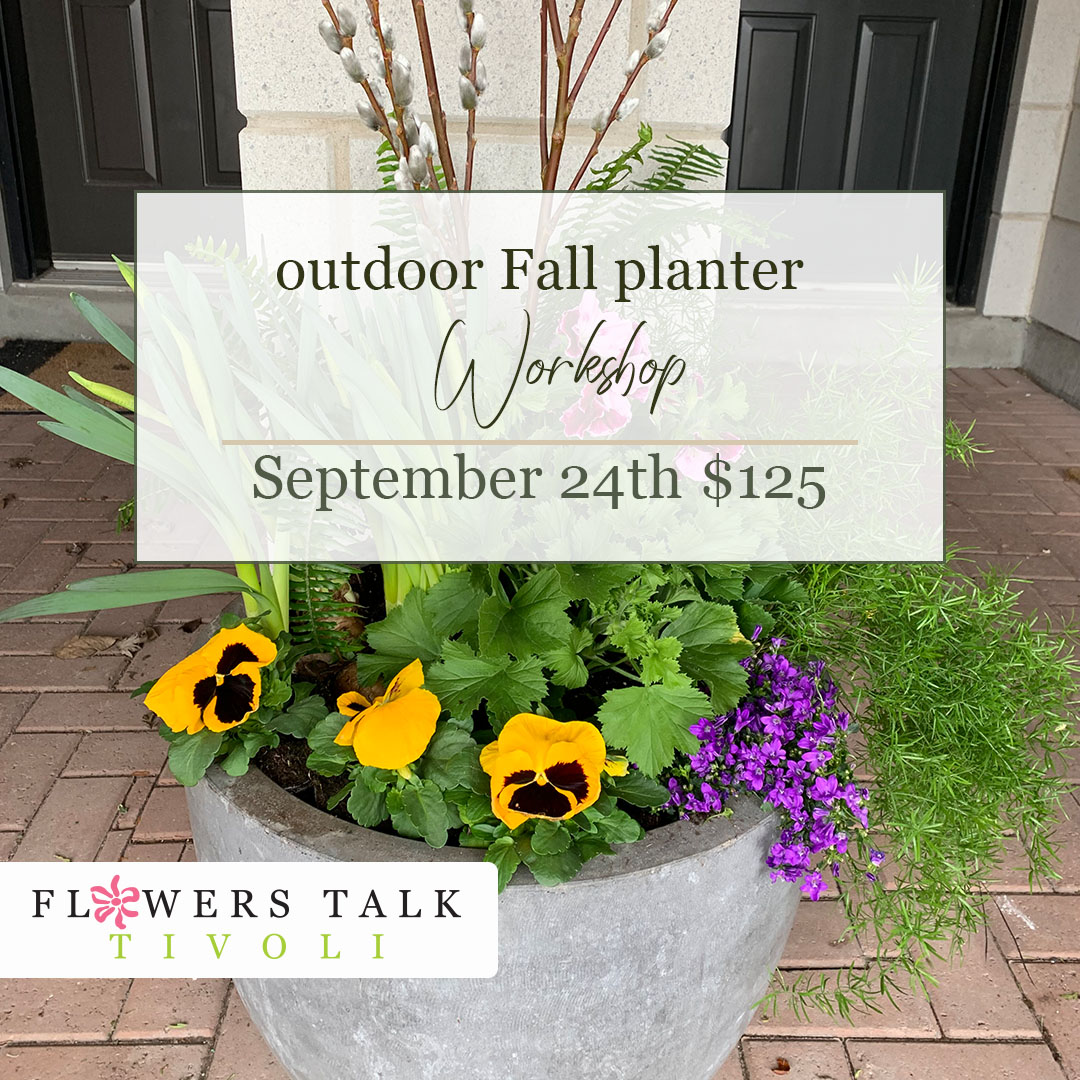 Flowers Talk Tivoli Fall Planter Workshop