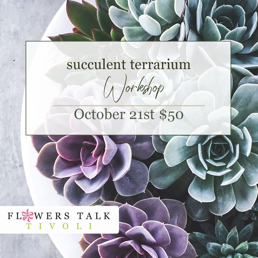 Flowers Talk Tivoli Succulent Terrarium Workshop