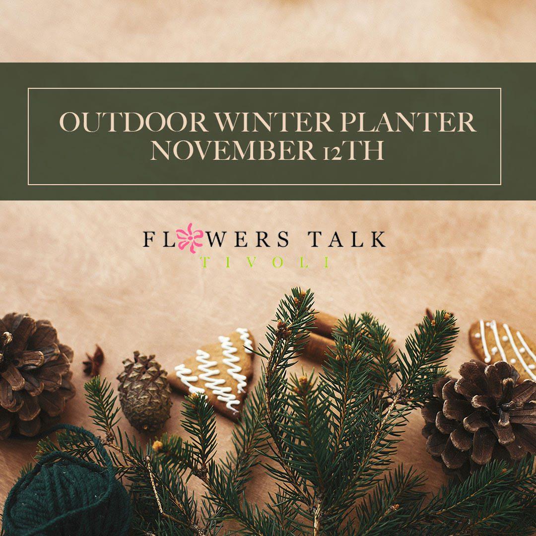 Flowers Talk Tivoli Winter Planter Workshop